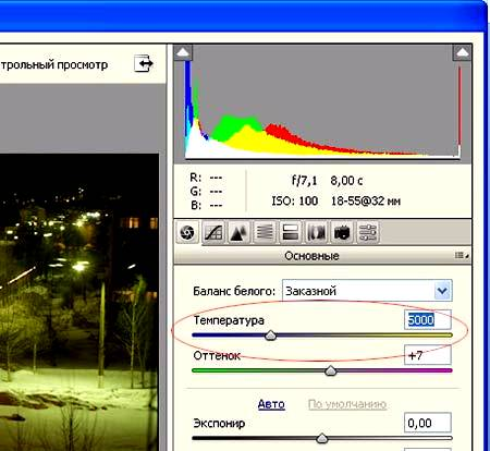 Основы модуля Camera Raw в Фотошопе
