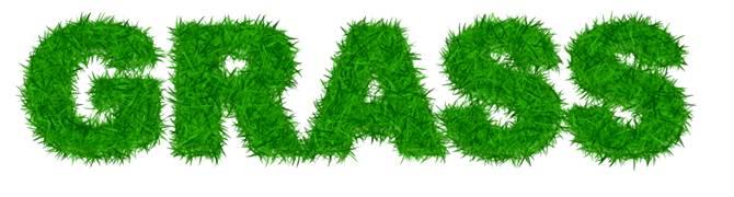 Создаем текст из травы используя Фотошоп