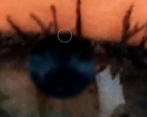 Профессиональная ретушь глаз в Фотошопе