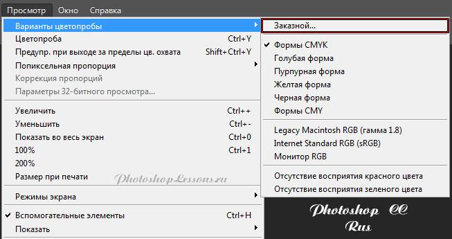 Перевод Просмотр - Варианты цветопробы - Заказной (View - Proof Setup - Custom) на примере Photoshop CC (2014) (Rus)