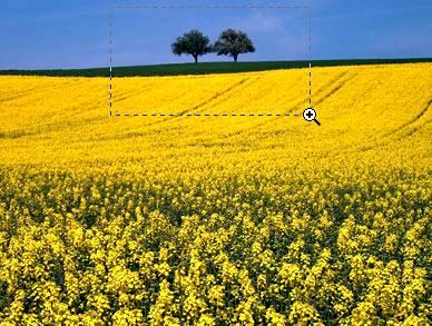 Инструмент Лупа (Zoom Toll) – увеличиваем или уменьшаем изображение в Фотошопе