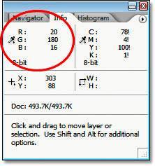 Панель Info (Инфо) в Photoshop, показывающая нам значения RGB для участка изображения.