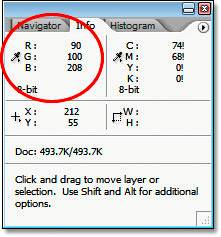 Панель Info (Инфо) Photoshop, показывающая информацию RGB для точки, выбранной на голове птицы.