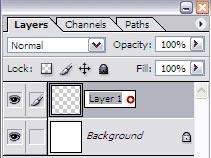 Переименовываем слой в панели слоев (Photoshop CS3).