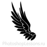 Кисти в виде крыльев ангела для Фотошопа - кисть 13