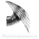 Кисти в виде крыльев ангела для Фотошопа - кисть 16