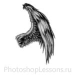 Кисти в виде крыльев ангела для Фотошопа - кисть 25