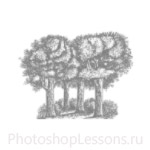Кисти: силуэты деревьев для Фотошопа - кисть 26