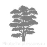 Кисти: силуэты деревьев для Фотошопа - кисть 5