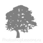 Кисти: силуэты деревьев для Фотошопа - кисть 6