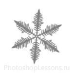 Кисти: снежинки для Фотошопа - кисть 12