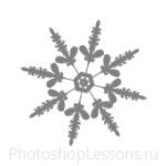 Кисти: снежинки для Фотошопа - кисть 13