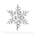 Кисти: снежинки для Фотошопа - кисть 39