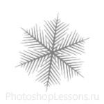Кисти: снежинки для Фотошопа - кисть 59