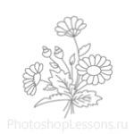Кисти: цветочные орнаменты для Фотошопа - кисть 16