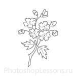 Кисти: цветочные орнаменты для Фотошопа - кисть 25