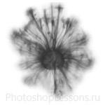 Кисти: плазма для Фотошопа - кисть 4