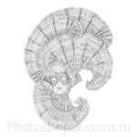 Кисти: маски для Фотошопа - кисть 47